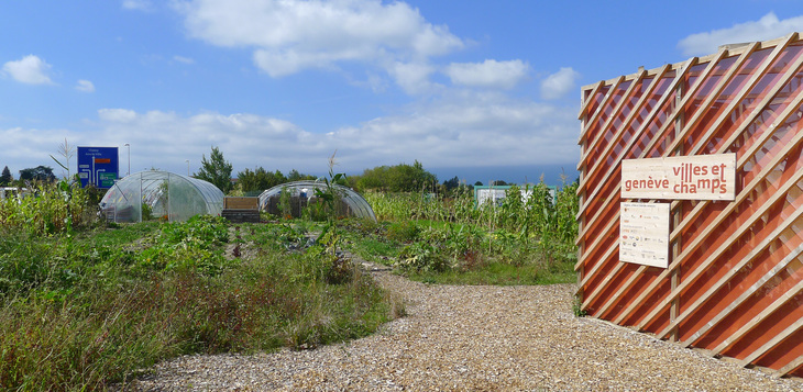 Temporary urban farm in Geneva 2014